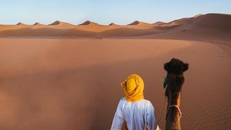 A landscape image of a desert in Egypt with a man and camel in the image.