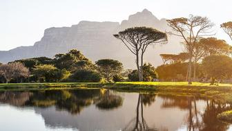 The Best Guide to Vacationing in Cape Town, South Africa
