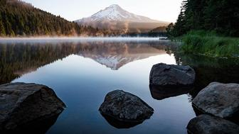 Where to Travel Now: Tours of the Pacific Northwest