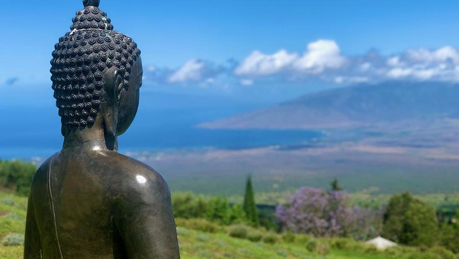 A postcard-worthy view of Lanai from a hilltop perspective with a local statue facing towards the ocean.