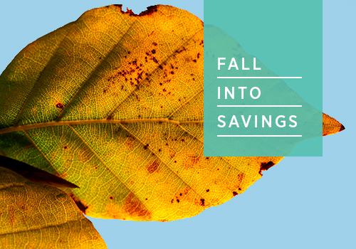 Exclusive Fall Into Savings Sale!