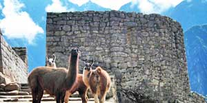 Globus: Save $600 on 2017 South America Escorted Tours!