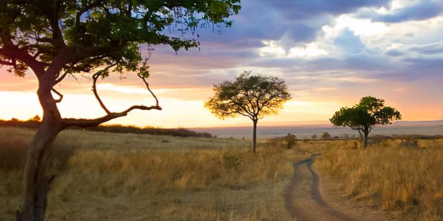 Africa Tours - Africa Tour Deals - Avoya Travel